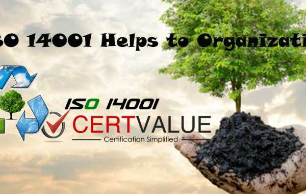 What are ISO 14001 Certification procedures and Why it is good for business?